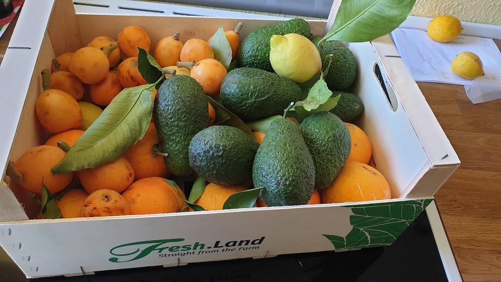 Fresh.land – Andalusiens frugt og grønt leveret direkte til døren