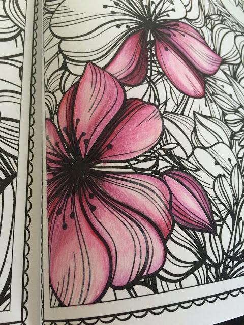 Fabolous Flowers coloring book